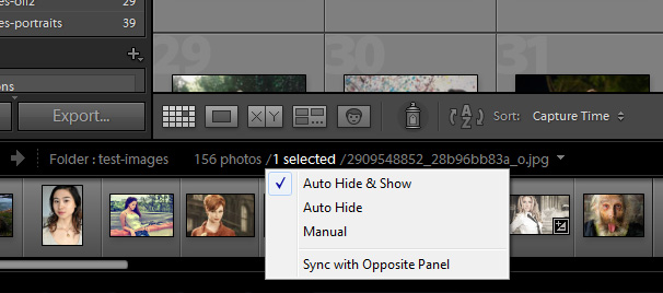 Auto-Hide Lightroom Panels