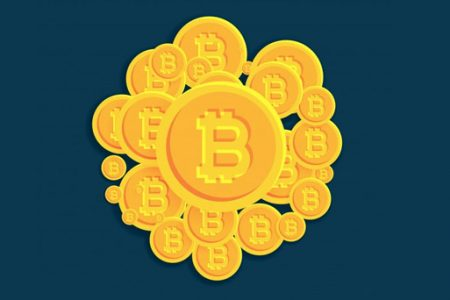 Bitcoin WordPress Plugins